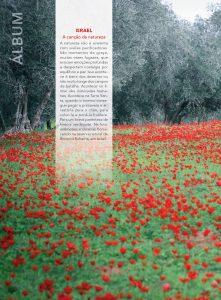http://revistaterrasanta.com.br/wp-content/uploads/2020/04/10-221x300.jpg